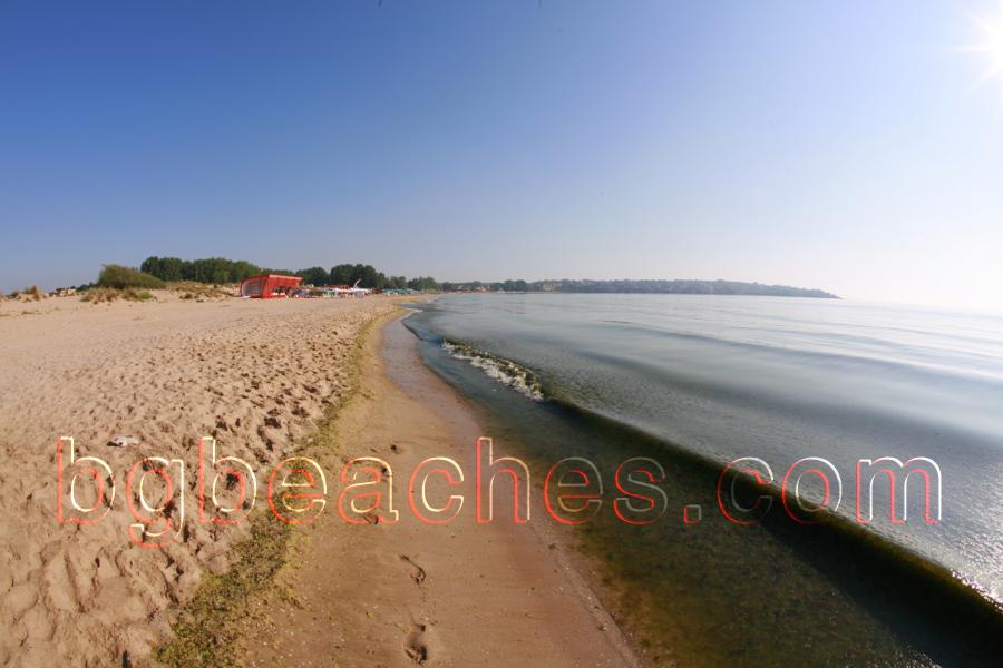 beach photo albums